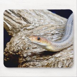 Animal Mousepad Series - Snake
