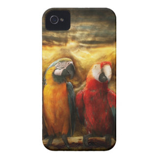 Animal - Parrot - Parrot-dise iPhone 4 Case-Mate Cases