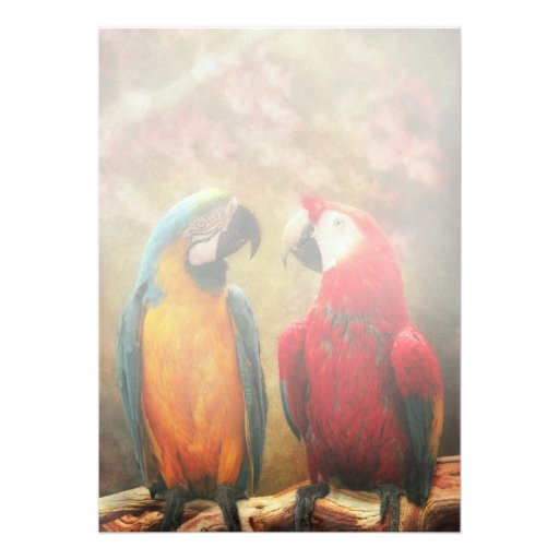 Animal - Parrot - We'll always have parrots Personalized Announcement