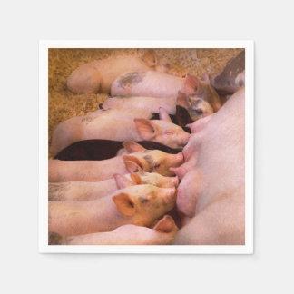 Animal - Pig - Comfort food Disposable Serviettes