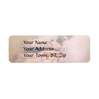 Animal - Pig - Comfort food Return Address Label
