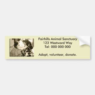 Animal Shelter Gifts and Stationery Bumper Sticker