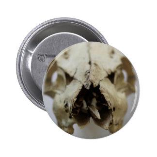animal skull photograph 6 cm round badge