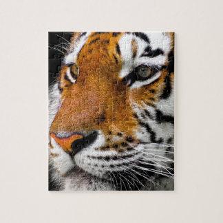 Animal Tiger Cat Amurtiger Predator Dangerous Jigsaw Puzzle