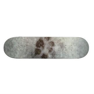 Animal tracks in the snow skateboards