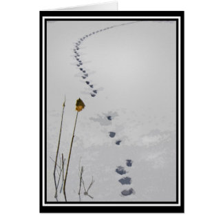 Animal Tracks Note Card