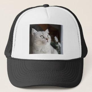 Animals Cat Feline Trucker Hat
