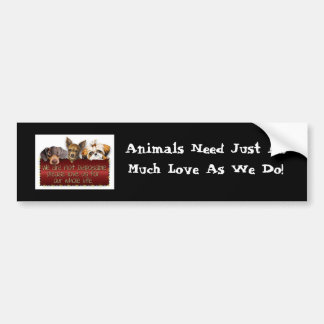 Animals Need Love Bumpersticker Bumper Sticker