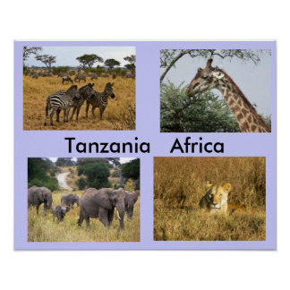 Animals of Tanzania Africa Poster