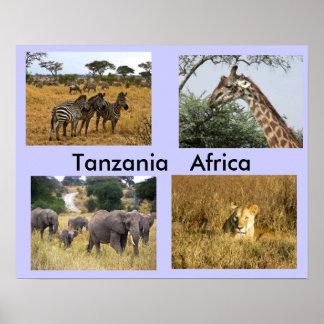 Animals of Tanzania Africa Poster