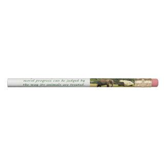 Animals Pencil