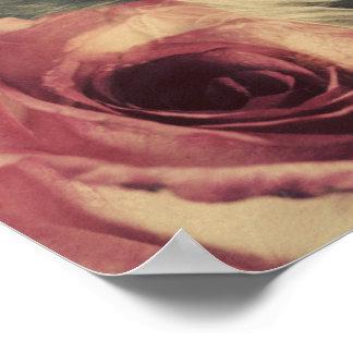 Anna Of Hesse -Winterhalter - Rose Overlay Poster