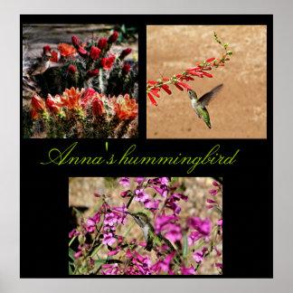 Anna s hummingbird collage print