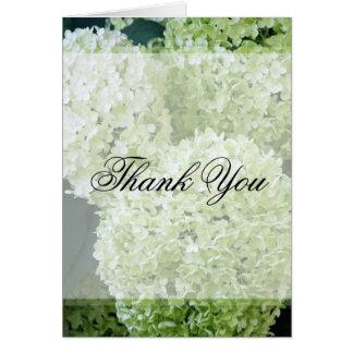 Annabelle Hydrangeas Thank You Card