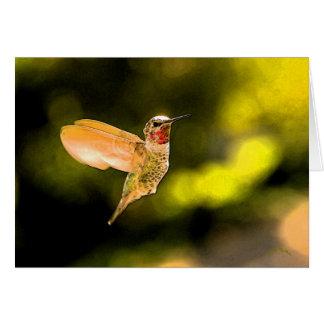 Anna's Hummingbird Card