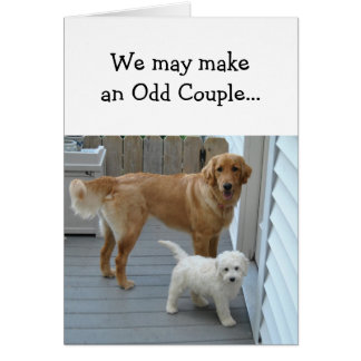 Anniversary Partner Sweetheart with Cute Dog Humor Card