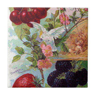 Annual Fruit Catalog 1896 Tiles