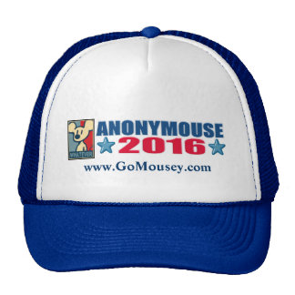 Anonymouse 2016 Hat