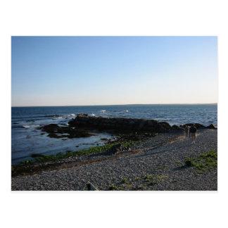 Another Newport Beach Postcard