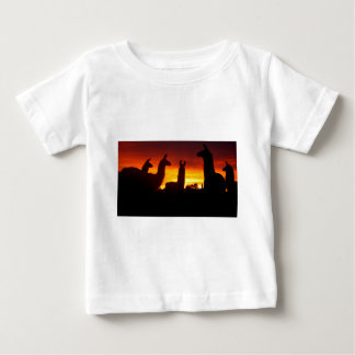Another Sunrise This Morning Baby T-Shirt
