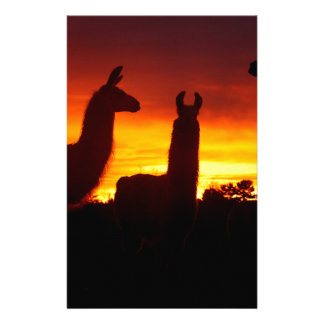 Another Sunrise This Morning Customized Stationery