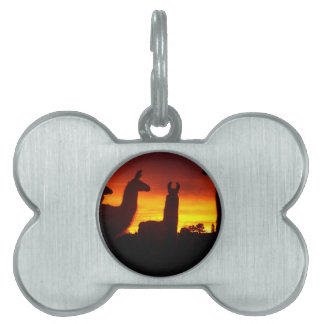 Another Sunrise This Morning Pet Tag