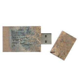 another winter wonderland wood USB 2.0 flash drive