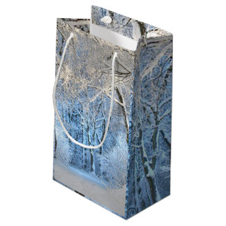 Another winter wonderland small gift bag