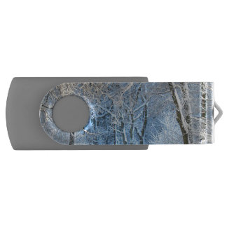 another winter wonderland swivel USB 2.0 flash drive