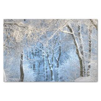 another winter wonderland tissue paper