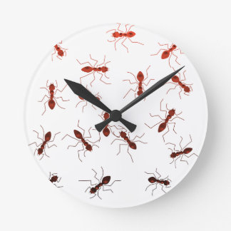 Ant antics. round clock