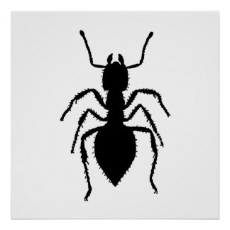 Ant Silhouette Poster