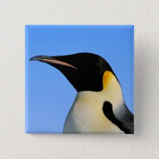 Antarctica, Australian Antarctic Territory, 8 15 Cm Square Badge