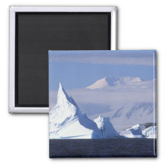 Antarctica, Boothe Island, Afternoon sun Square Magnet