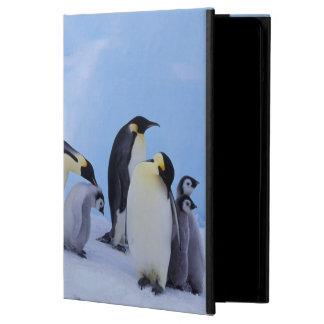 Antarctica Emporer Penguin Aptenodytes iPad Air Covers