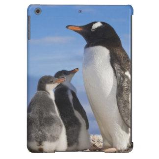 Antarctica, Neko Cove (Harbour). Gentoo penguin 2 Cover For iPad Air