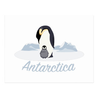 Antarctica Penguins Postcard