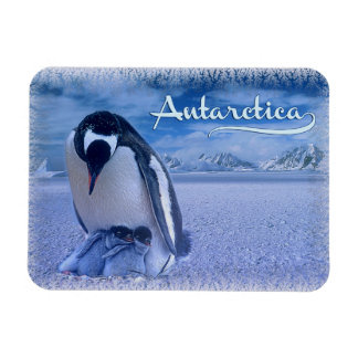 Antarctica Rectangular Photo Magnet