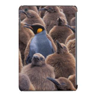 Antarctica, South Georgia Island, King penguins iPad Mini Cover