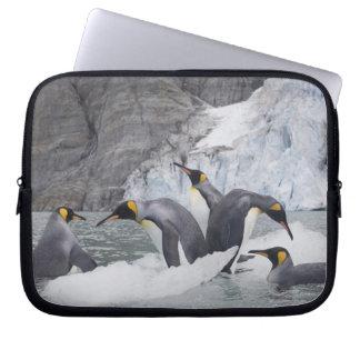 Antarctica, South Georgia Island (UK), King 14 Laptop Sleeve