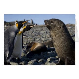 Antarctica, South Georgia Island (UK), King 15 Card