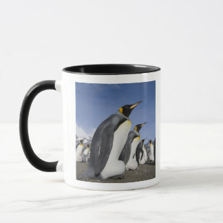 Antarctica, South Georgia Island (UK), King 2 Mug