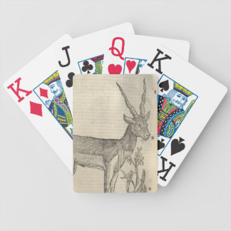 Antelope Bicycle Playing Cards