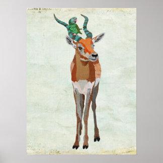 Antelope & Parrot Art Poster
