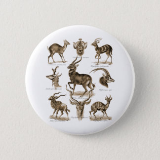 Antelopes 6 Cm Round Badge