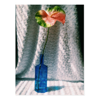 anthurium and blue bottle still life postcard