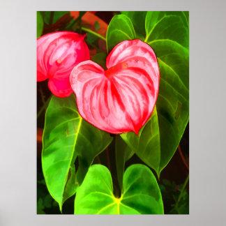 Anthurium Plant Poster