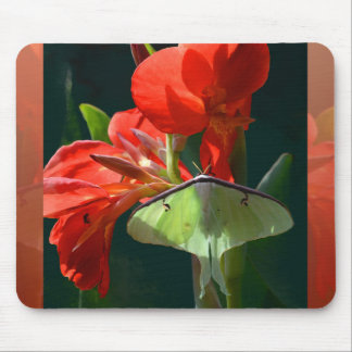 """Anticipation of the Night"" - Luna Moth Painting Mouse Pad"