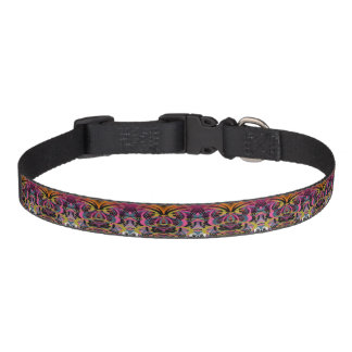 Anticipation Pet Collar