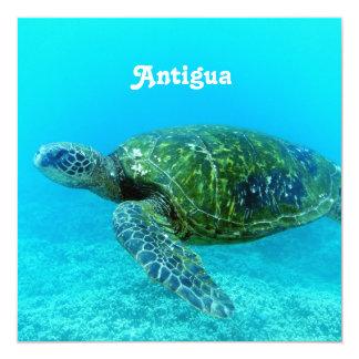 Antigua Hawk Billed Turtle 13 Cm X 13 Cm Square Invitation Card